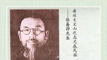 【辛亥革命史画】张善孖先贤