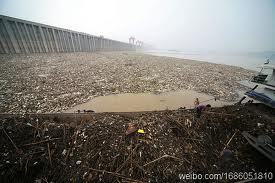 王维洛:三峡工程是培养工程院院士的摇篮