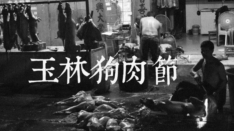 烧狗妹不是中国人? 老外揭秘背后黑幕