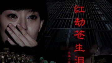 《红劫苍生泪》连载(六)