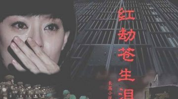 《红劫苍生泪》连载(十)