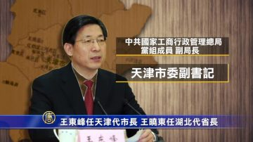 王东峰任天津代市长 王晓东任湖北代省长