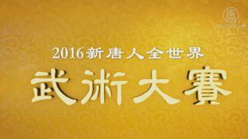 2016年新唐人全世界华人武术大赛特别节目(3)