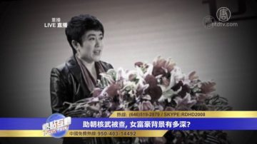 胡平:马晓红只是白手套 背景直达中央(视频)