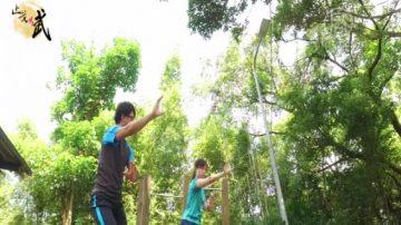 【武】止戈为武(二):螳螂拳/长拳