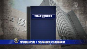 【禁闻】中国蓝皮书:官员藉股灾发国难财