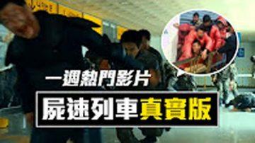 【老外看中国】本周热门影片: 川普孙女唱中文歌、自制空拍战机、尸速列车真实版