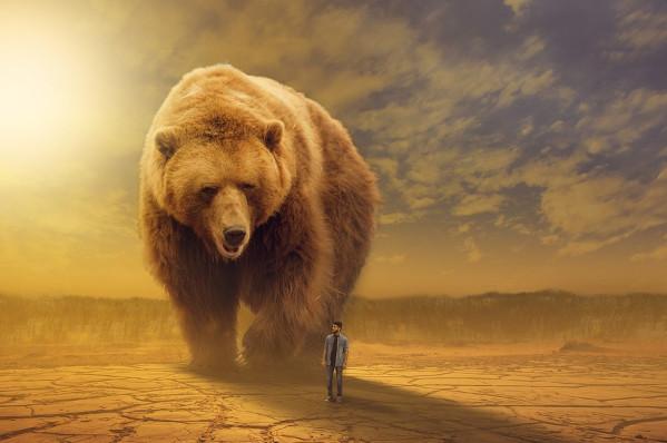 """野外求生错误观念会害死人!遇到熊就""""装死""""并不是个很好的做法!"""
