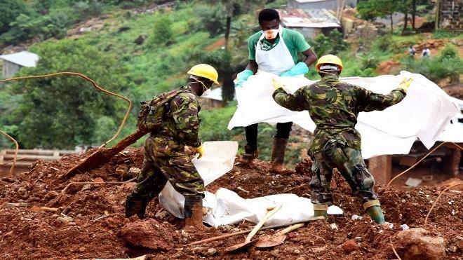 经暴雨洪灾土石流 塞拉利昂至少441死600人失踪