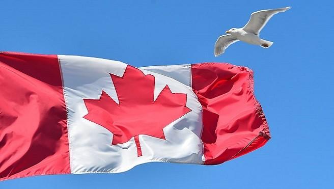 加拿大成避税天堂? 140万中国人持加10年签