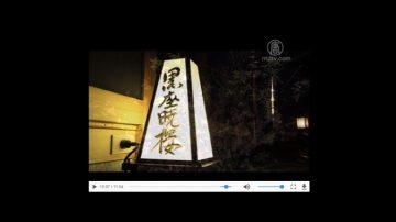 【你好日本】日本料理-黑座晓楼