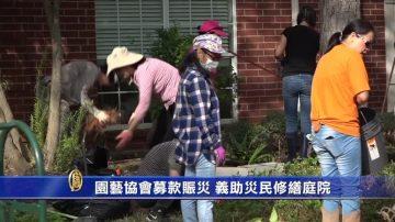 园艺协会募款赈灾 义助灾民修缮庭院