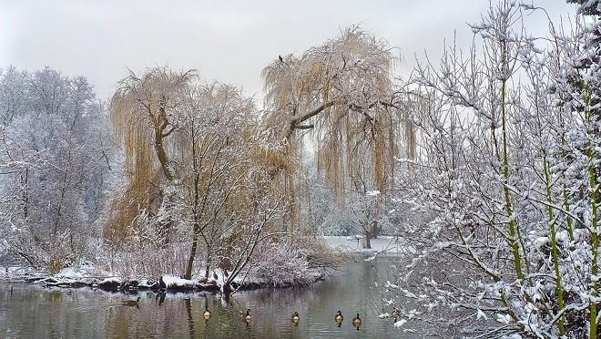 时候频过小雪天 养藏适度人得安