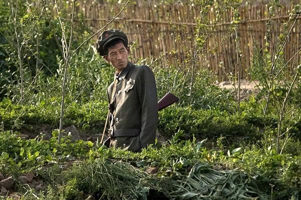 韩媒:朝鲜士兵脱北传递惊人信息 威胁金正恩政权