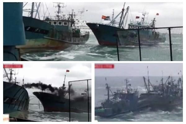 逾50中国渔船非法捕鱼  遭韩海警扫射453枪扣20人