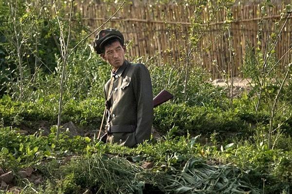日媒惊曝朝鲜士兵没能力开枪