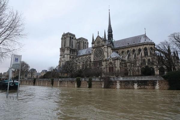 塞纳河水位持续上涨 游船业者叫苦连天
