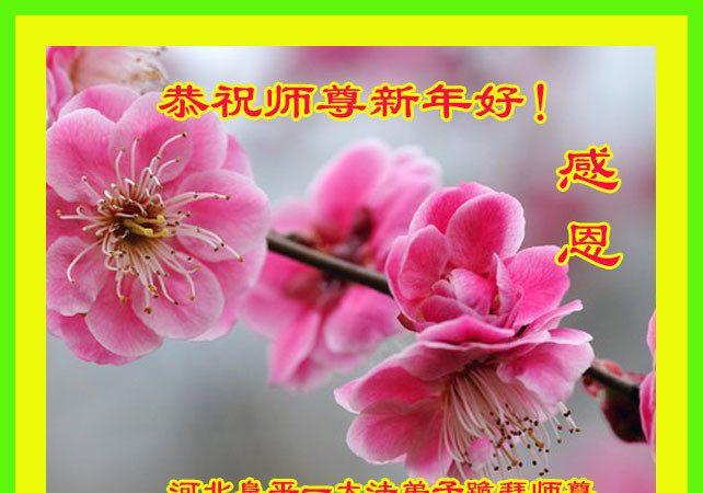 河北法轮功学员恭祝李洪志大师新年好
