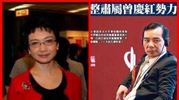 """张明健:邓家""""驸马""""吴小晖 真正后台是江家"""