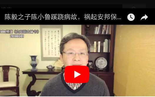 文昭:陈毅之子陈小鲁蹊跷病故,祸起安邦保险?