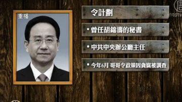 令计划等38人政协委员资格被撤销