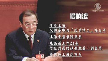 【热点解读】杨晓渡成黑马和中共党务机构大改组