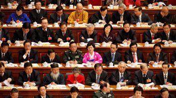 袁斌:中共的人大代表就是个笑话