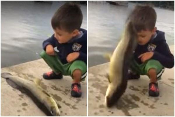 小男孩在观察跑到岸上的鱼 下一秒却让他措手不及