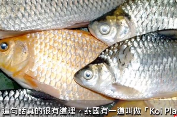 去泰国千万不要吃这道菜 没煮熟的鱼肉很危险(视频)