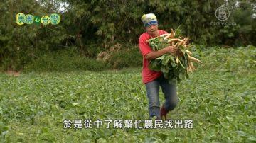 美丽心台湾:海海人生 海盐文化结合在地农产