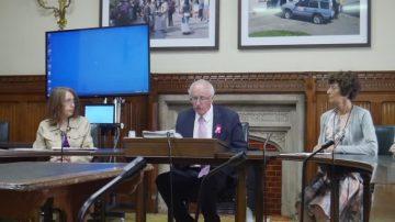 反迫害19年 英国议会研讨会声援法轮功