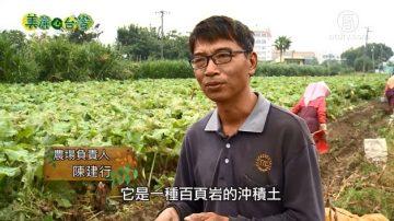 美丽心台湾:陈建行归乡 找回归来牛蒡产业的荣耀