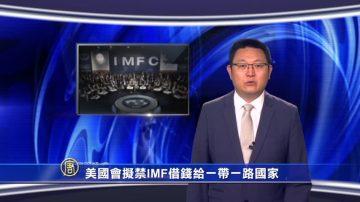 【微视频】美国会拟禁IMF借钱给一带一路国家