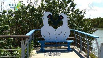 1000步的缤纷台湾:台南七股 胶筏游潟湖