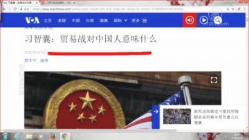 【石涛评述】习智囊:贸易战对中国人意味着什么 (下)