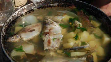 父陪女儿喝鱼汤10年 女儿在祭拜他时才知道爸爸陪她喝鱼汤的秘密