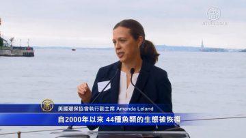 全美可持续发展渔业蓬勃 环境与经济双赢
