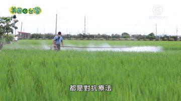 美丽心台湾:有机农业的推手 陈世雄的零污染有机农场