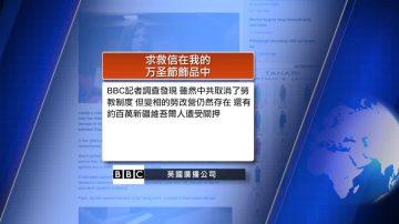 10月29日全球看中国