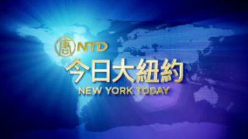 【今日大纽约】11月13日完整版