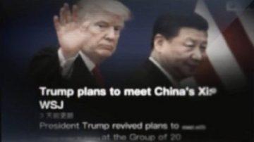 【微视频】G20川普与习近平会谈与否要看谈判结果