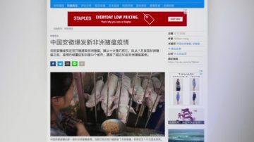 11月12日全球看中国