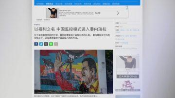 11月19日全球看中国