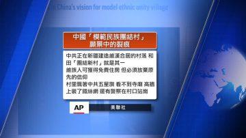 11月21日全球看中国