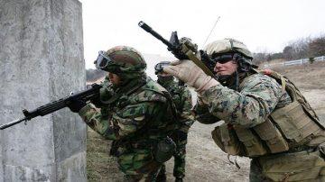 反击朝鲜要挟?美韩海军陆战队重启联合军演