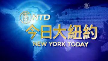 【今日大纽约】11月24日完整版