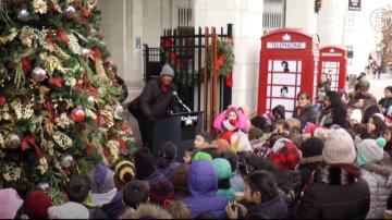 学生自制亮丽装饰 皇后区Astoria圣诞树点灯
