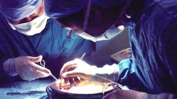 新调查录音:中国器官移植速度惊人 来源有黑洞