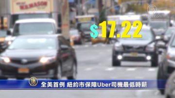 全美首例 纽约市保障Uber司机最低时薪