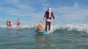 庆祝圣诞方式多 佛州冲浪德国冬泳